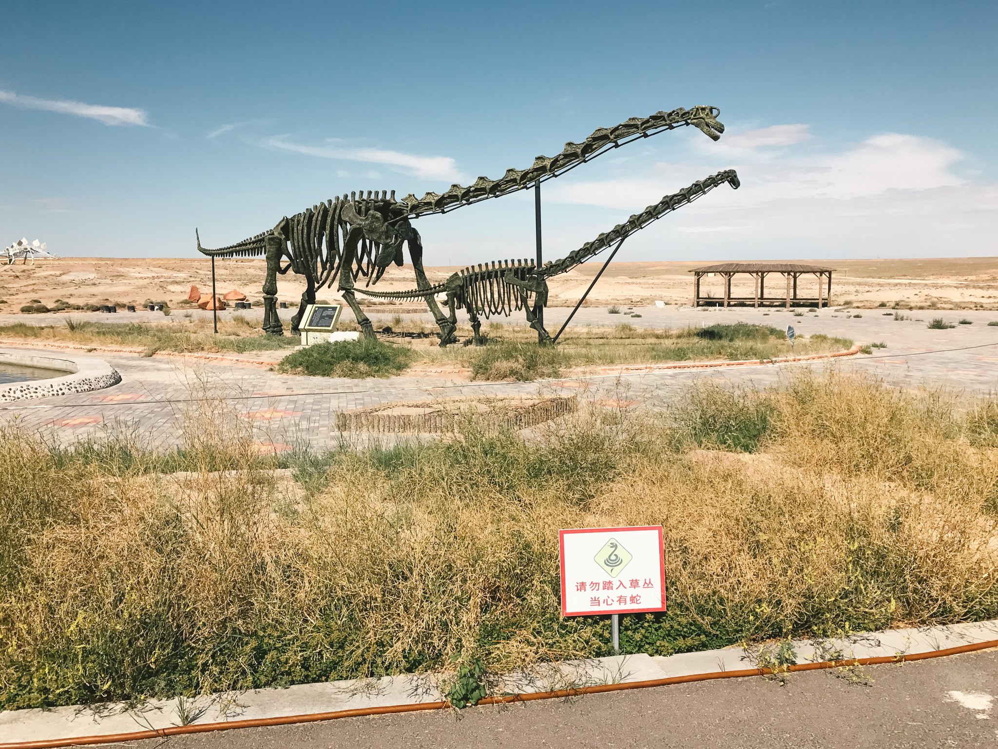 erlian dinosaur museum attractions