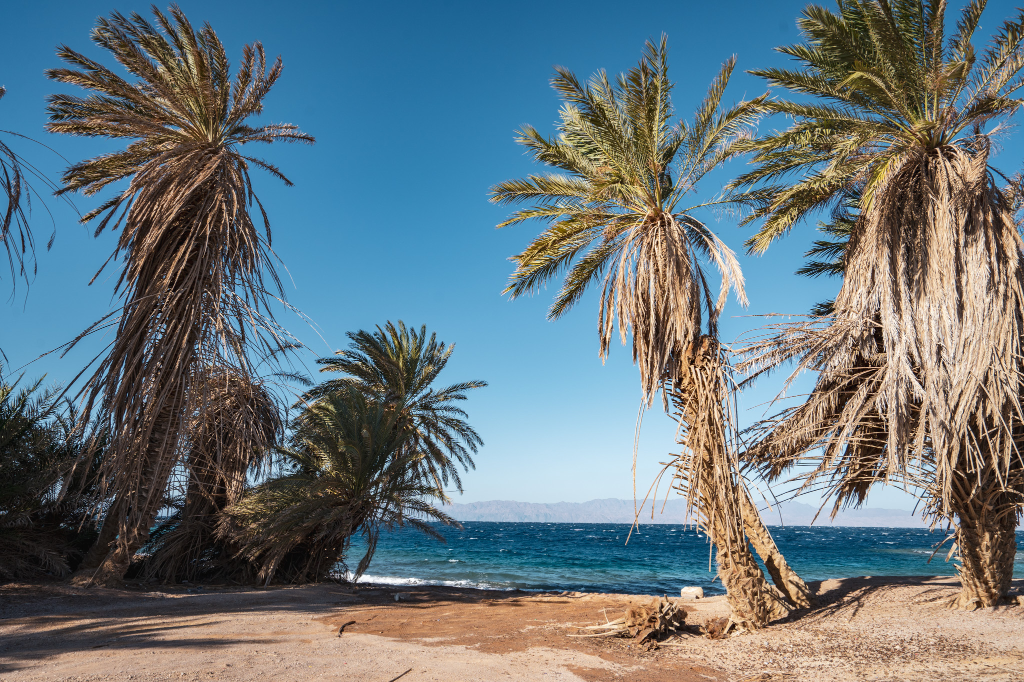 Secluded beach on the Gulf of Aqaba